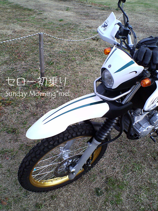 hatsunori_serow01.jpg